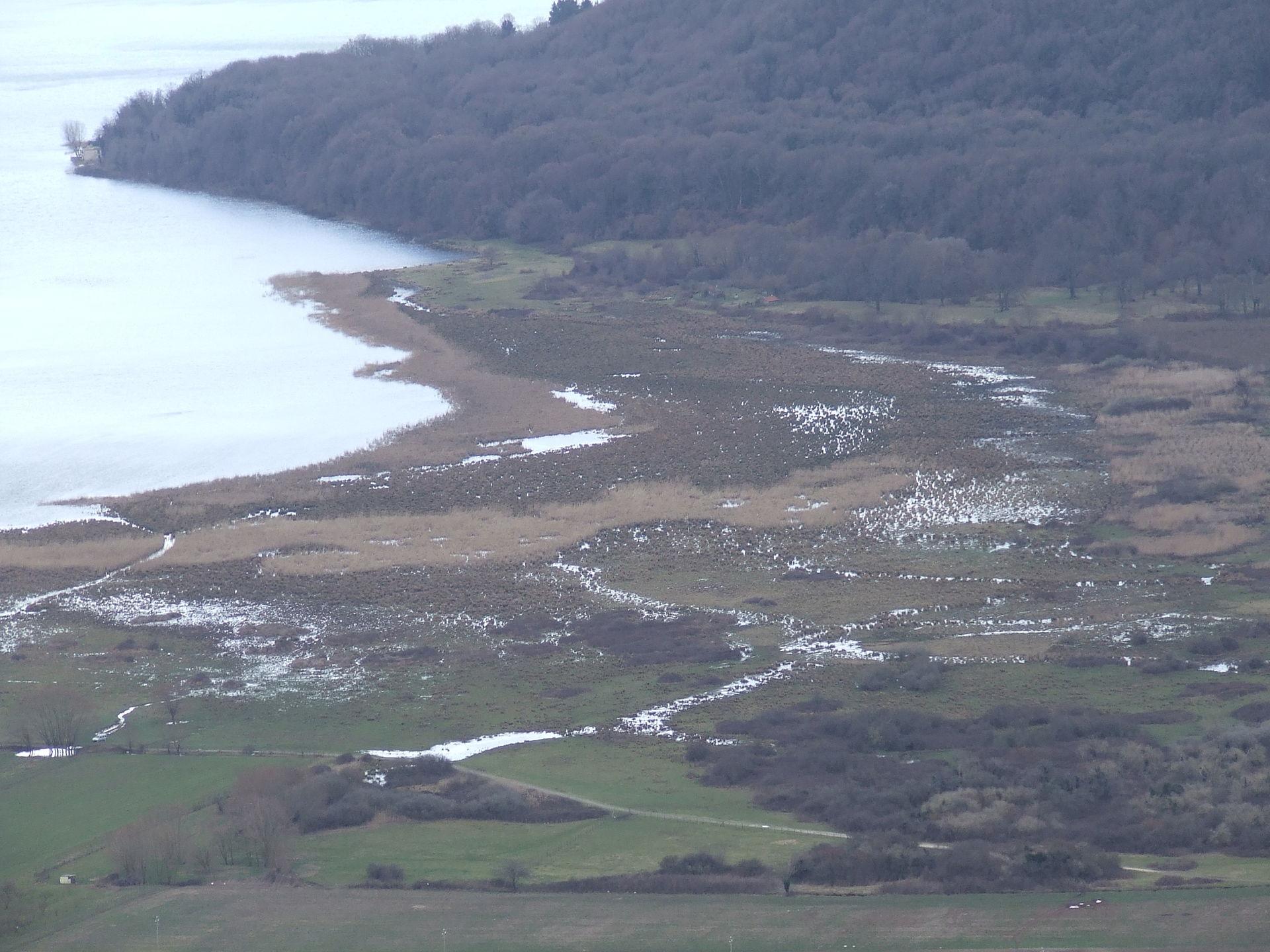 Riserva Naturale del lago di Vico