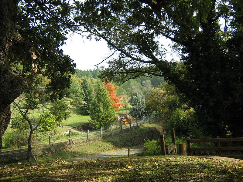 Riserva Naturale di Monte Rufeno