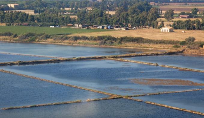 Riserva Naturale delle Saline a Tarquinia